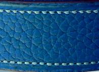 Taurillon lagun bleu saphir