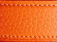 Taurillon lagun orange 2