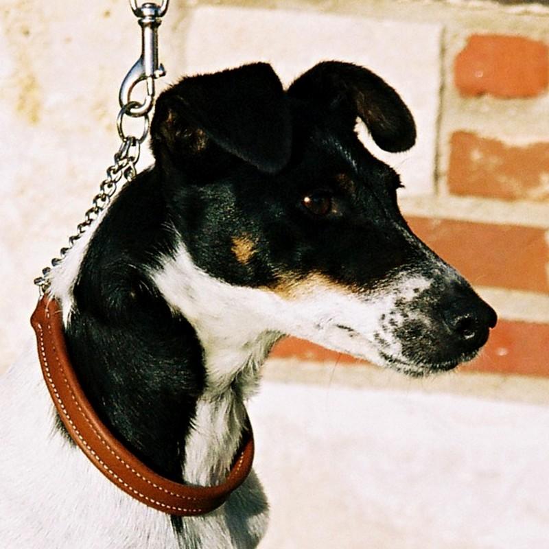 Starlette porte un collier semi-étrangleur en veau nappa gold